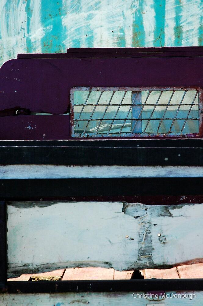 bluescape by Christine McDonough