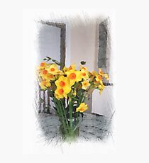 Daffodils in vase ... still life Photographic Print