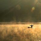 Golden Catch by Hicksy