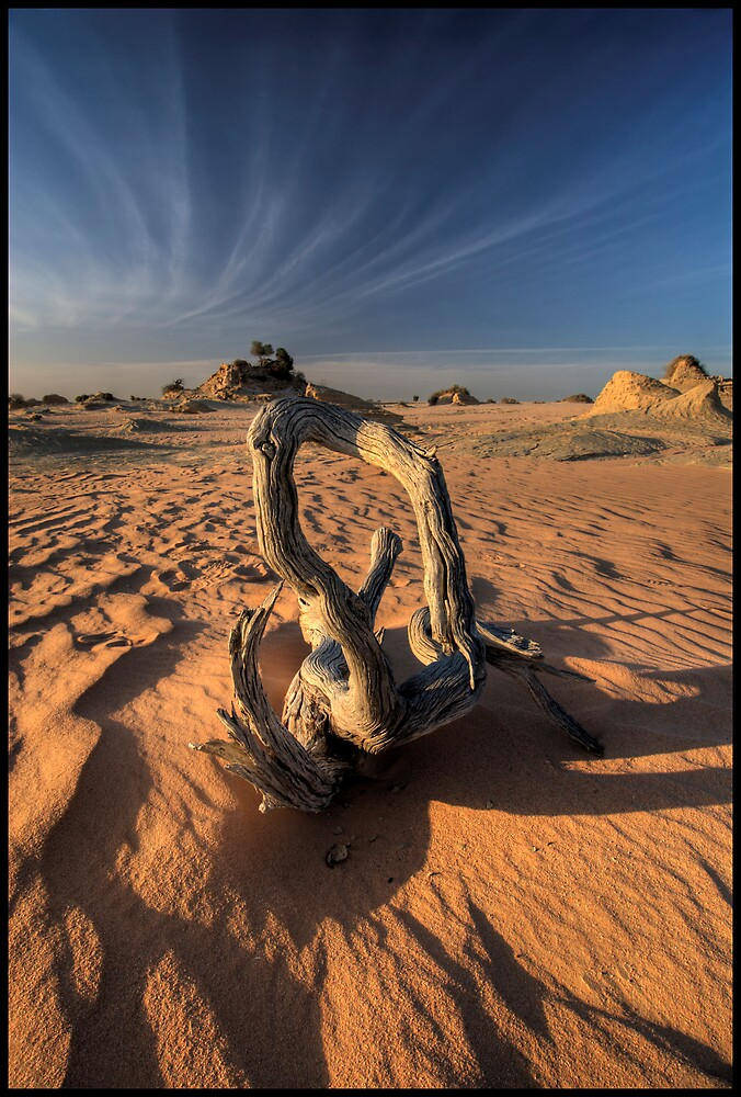 Desert Wood and Cirrus Clouds by Robert Mullner