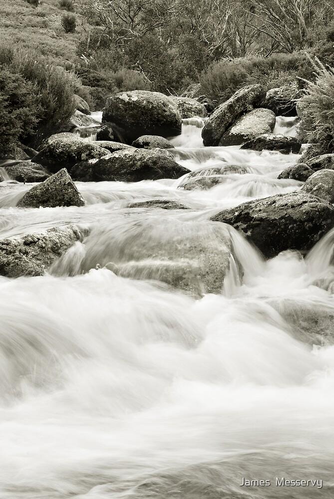 Thredbo River by James  Messervy