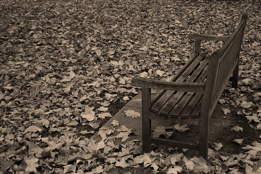 Lonely Autumn by silverfish