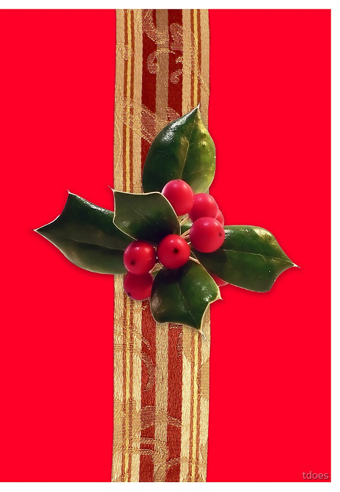 Holly greeting card by tdoes
