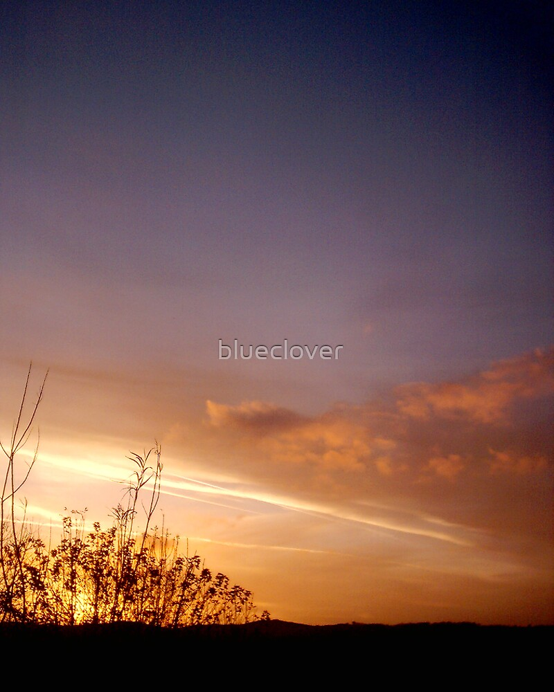 Sunset in November 2007 by blueclover