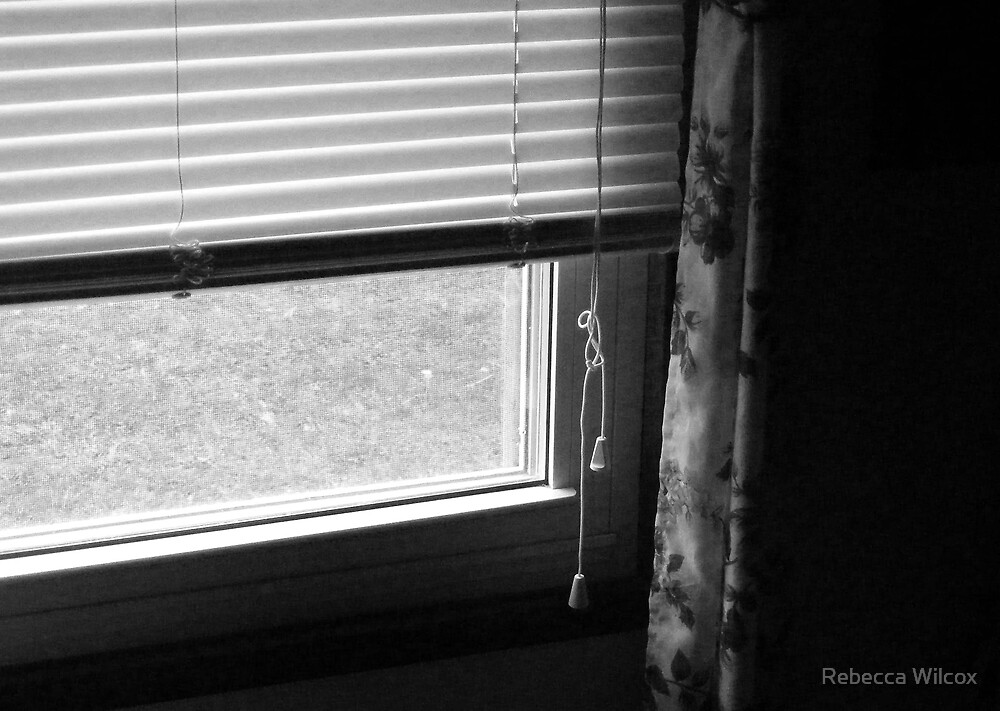 Through The Window by Rebecca Brann