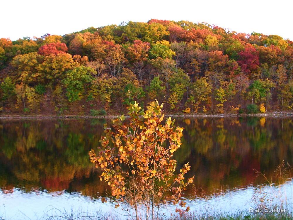 Lake Lincoln 3 by Brad Sumner