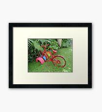 Cycling in Rarotonga Framed Print