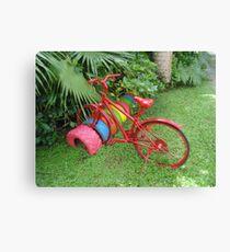 Cycling in Rarotonga Canvas Print