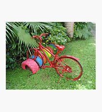 Cycling in Rarotonga Photographic Print