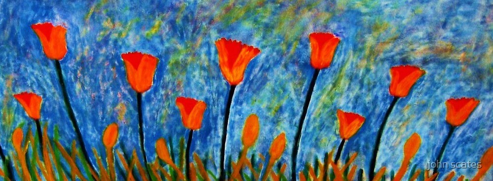 Spring Flowers by john scates