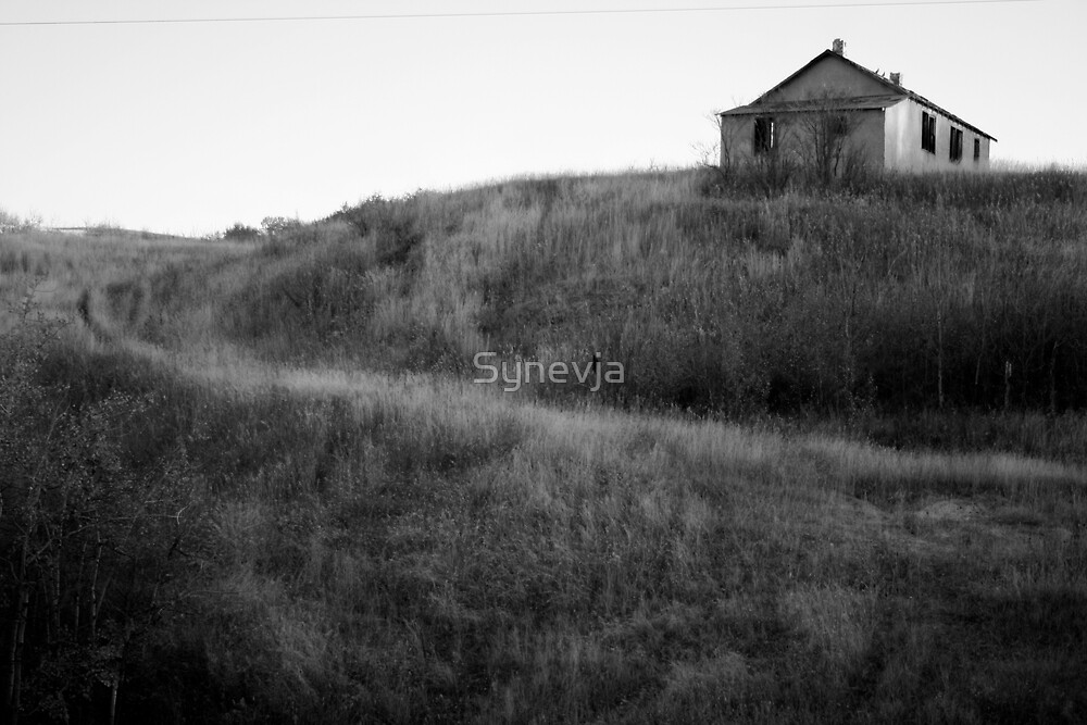 House on Rolling Hills by Synevja
