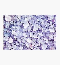 Sea salt for beauty treatment with lavender aroma Photographic Print
