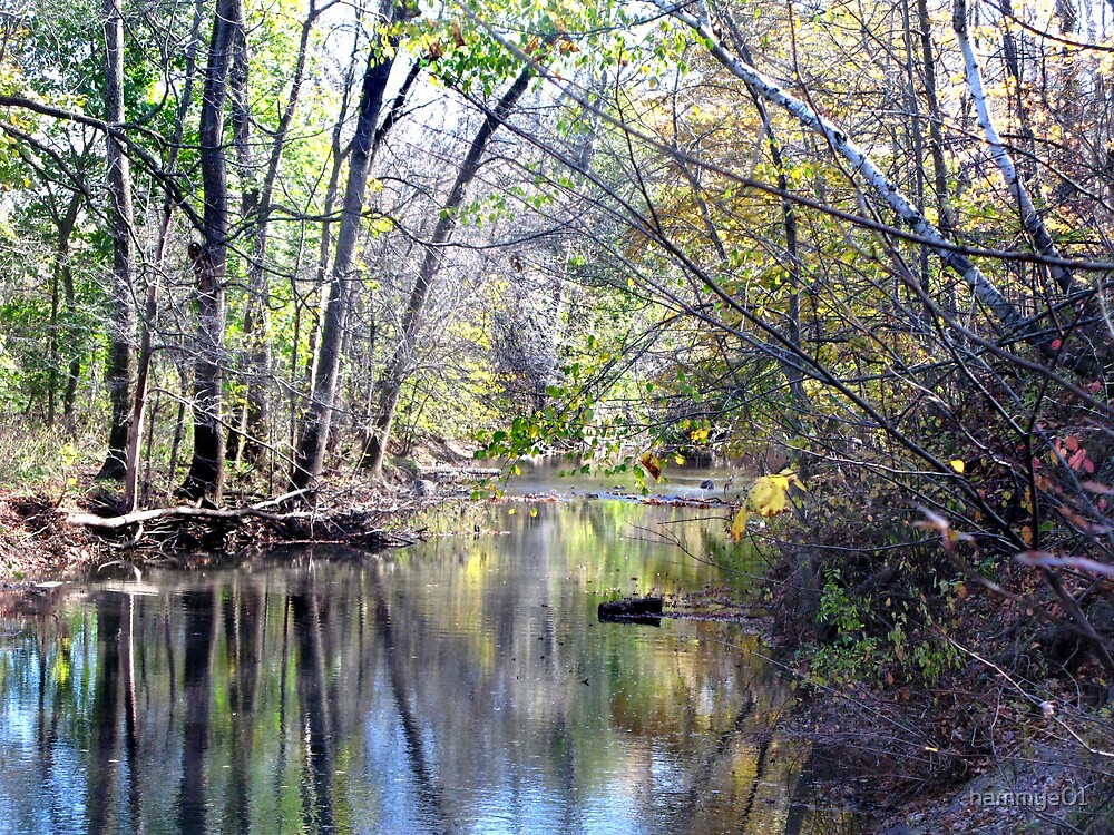 Autumn in Wisconsin by hammye01
