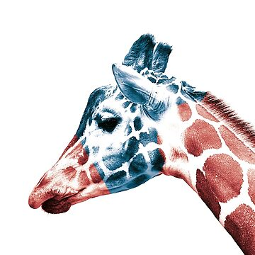 Giraffe 2 Color Minimal Pop Art by Ozgurkusak