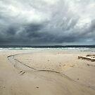 Nelson Beach Erosion  by PixelsbyDezine