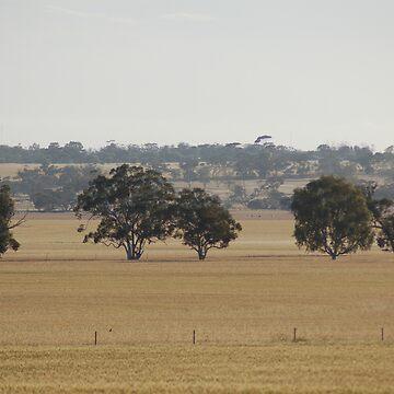 Wheatbelt  by maverickchild