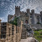 Castle of Obidos by J. Day