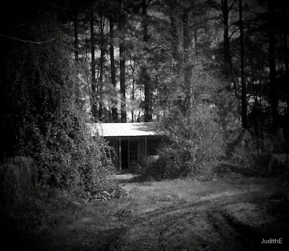Solitude by JudithE