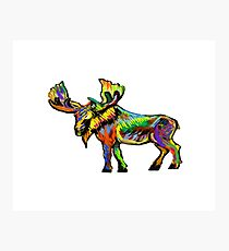 The Vibrant Bull Photographic Print