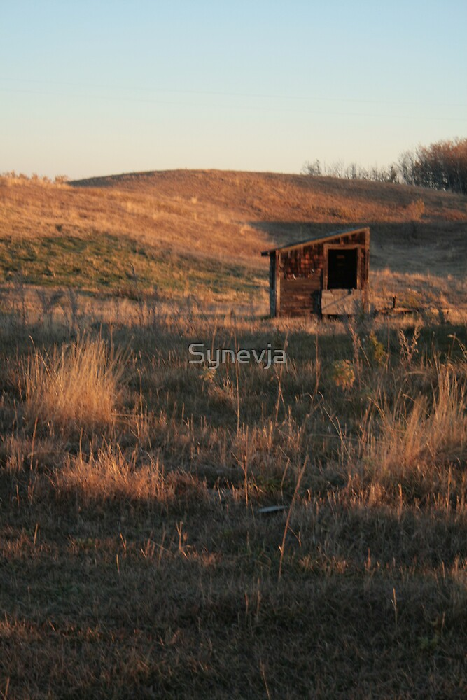 Good Morning Prairie by Synevja