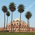 Humayun's Tomb, Delhi by Petr Svarc