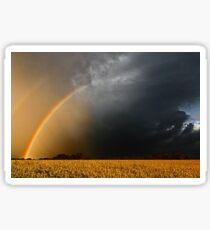 Storm Over Canolla Field  Sticker
