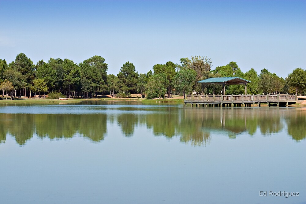 Lake by Ed Rodriguez