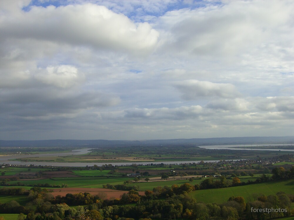 River Severn by forestphotos