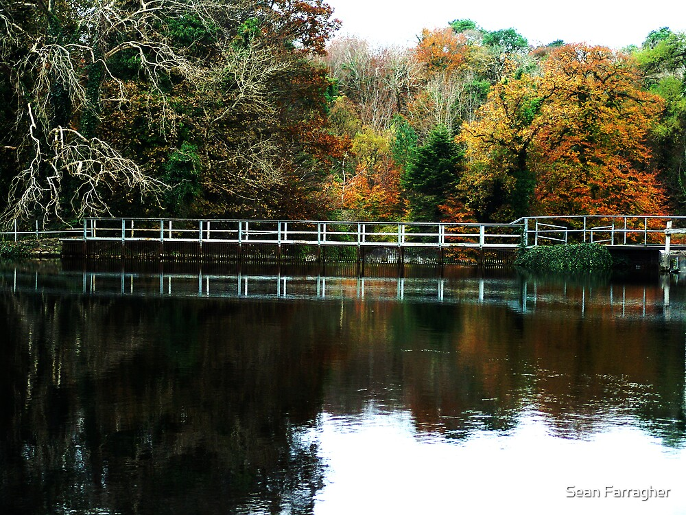 REFLECTION IN CONG by Sean Farragher