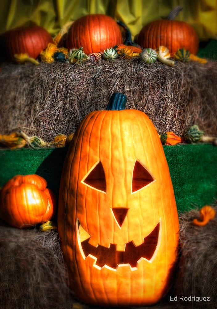 Halloween Pumpkin by Ed Rodriguez