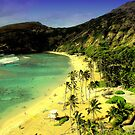Hanauma Bay by MEV Photographs