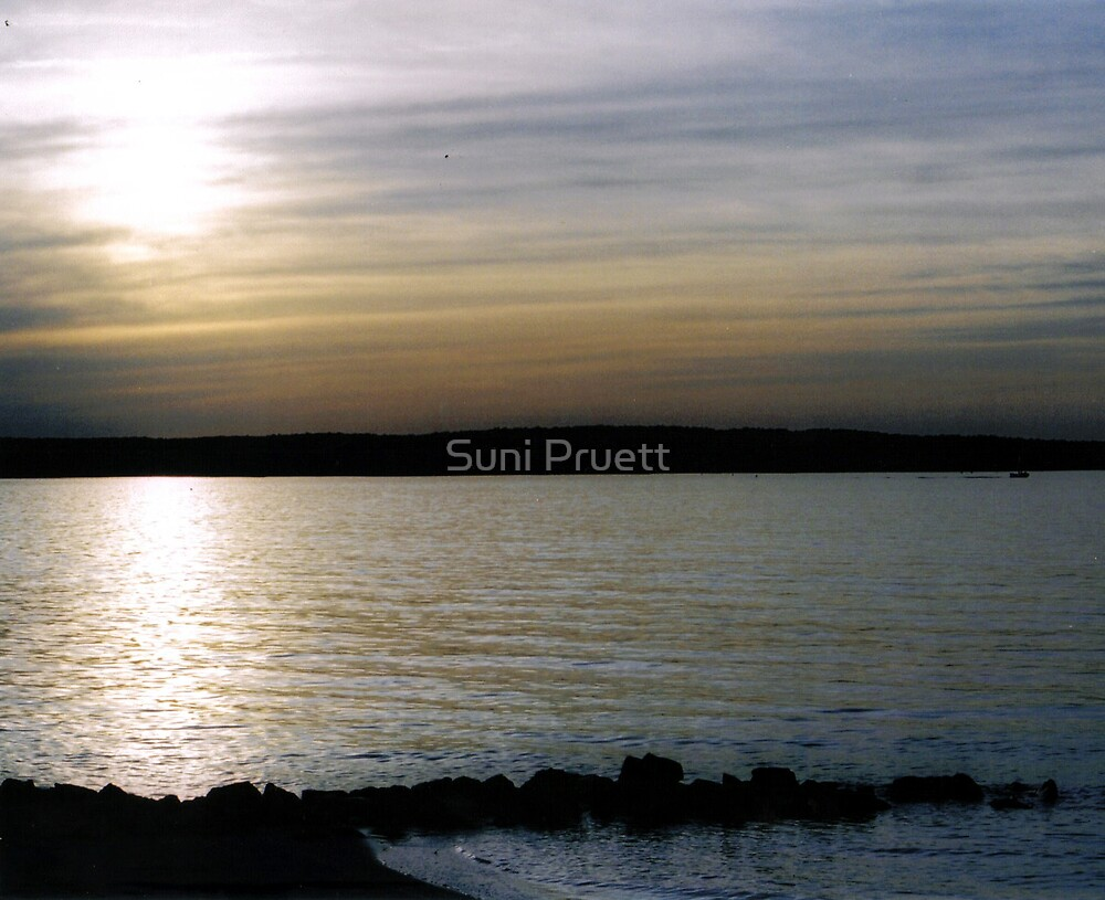 My Favorite Spot by Suni Pruett
