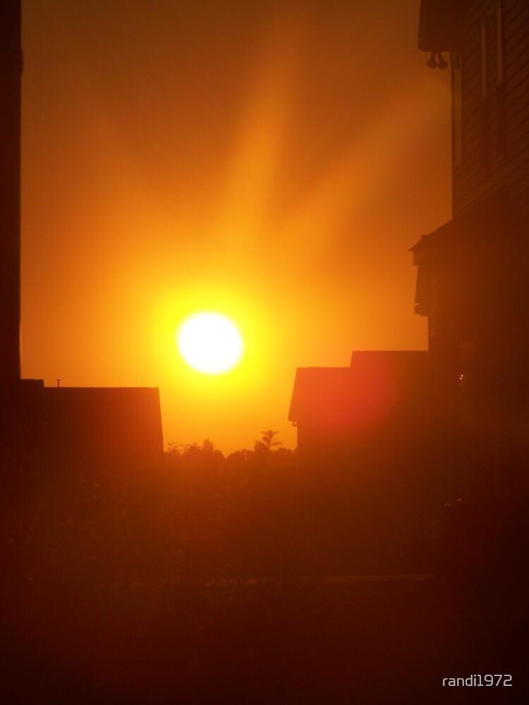 sunset by randi1972