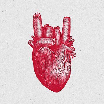 Party Heart by Madkobra