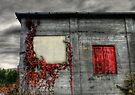 Red Door Against an Angry Sky by Wayne King