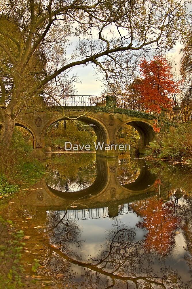 Still....... by Dave Warren