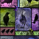 Colorful Crows Collage by gothicolors