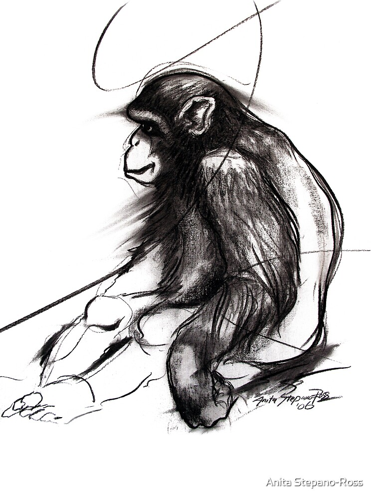 chimpanzee by Anita Stepano-Ross