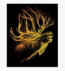 Mountain Spirit -black- Photographic Print
