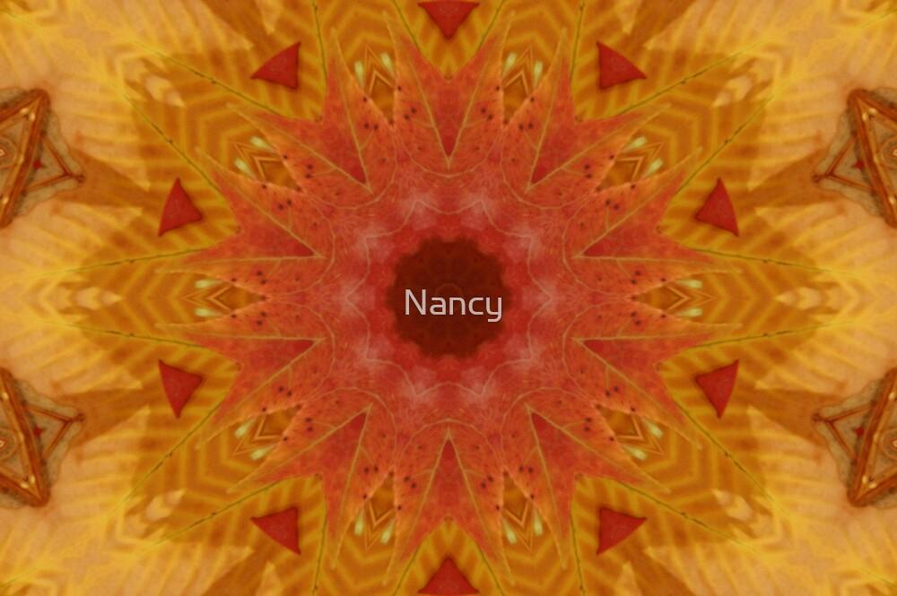 Kaleidoscope fall leaves by Nancy