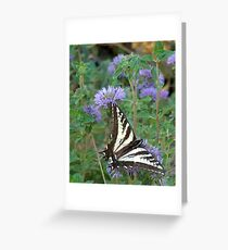 Butterflys Greeting Card