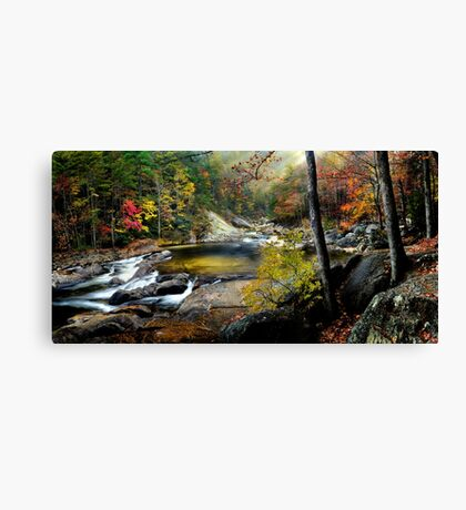 After the Rain at Wilson Creek  Canvas Print