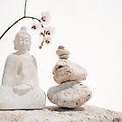 White Buddha by Elena Ray
