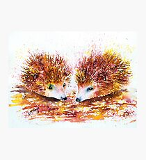 PRICKLE & SPIKE Photographic Print