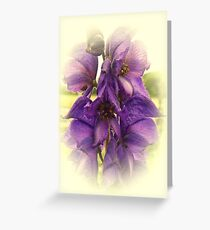 Canterbury Bell Greeting Card
