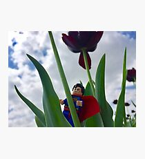 Superman lookout Photographic Print