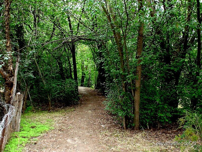 Path To Somewhere by elizabethrose05