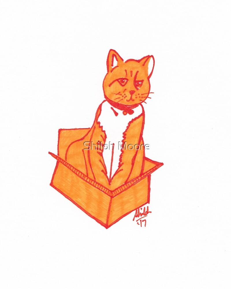 Pop Art Ginger Cat by Shiloh Moore