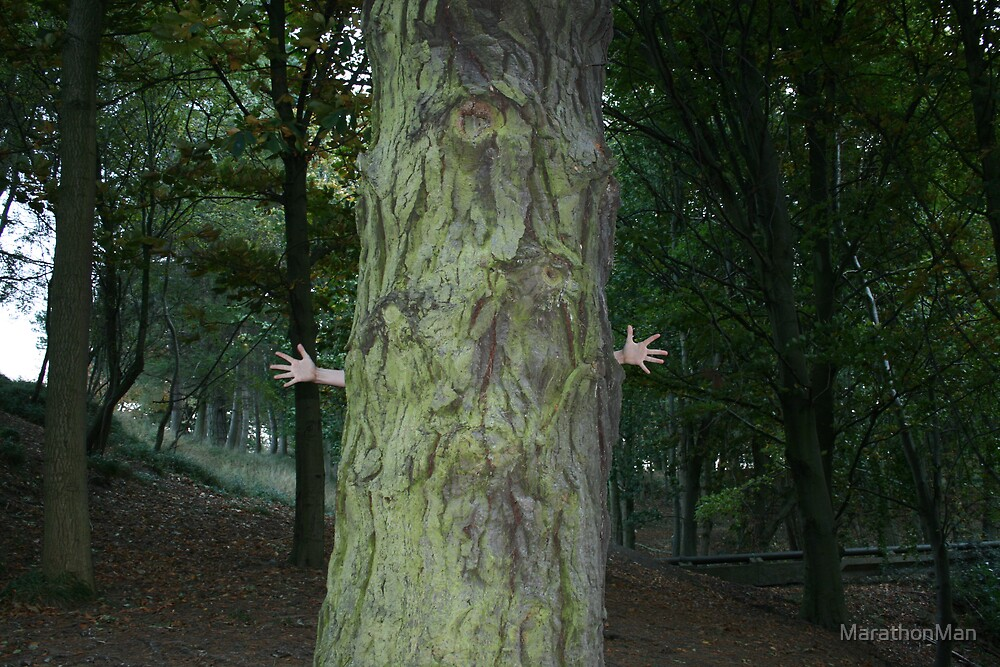 Two hands or tree by MarathonMan