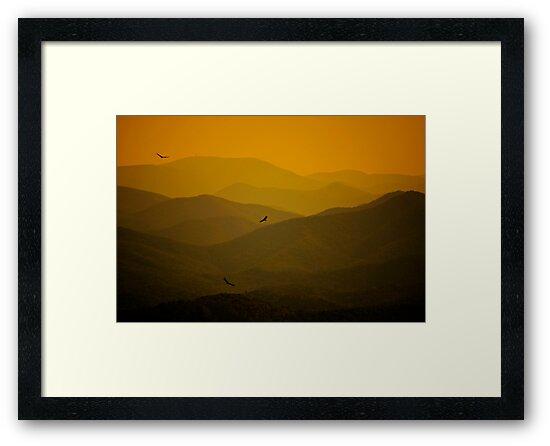 Flight of the Hawks by Robert Burns Miller